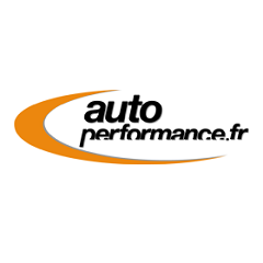 Logo Auto performance