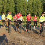 épreuve de relais interentreprises à Nantes